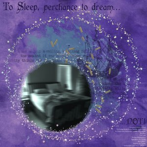 To-Sleep-Perchance…WEB